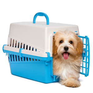 Designate Friends and Family for Pet Boarding