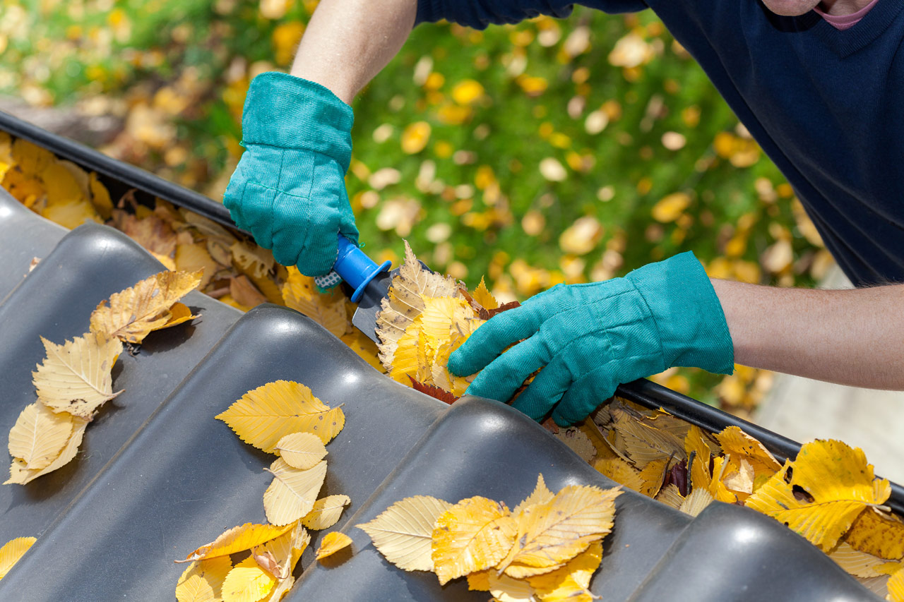 5 Fall Home Maintenance Tips | ALE Solutions